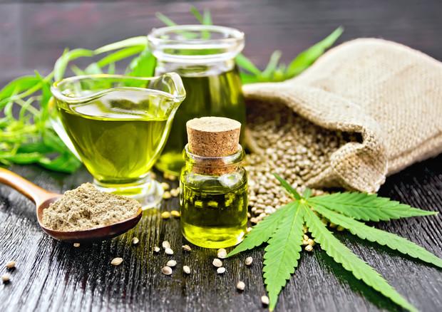 Cannabis terapeutica, farmaco gratuito in Sicilia