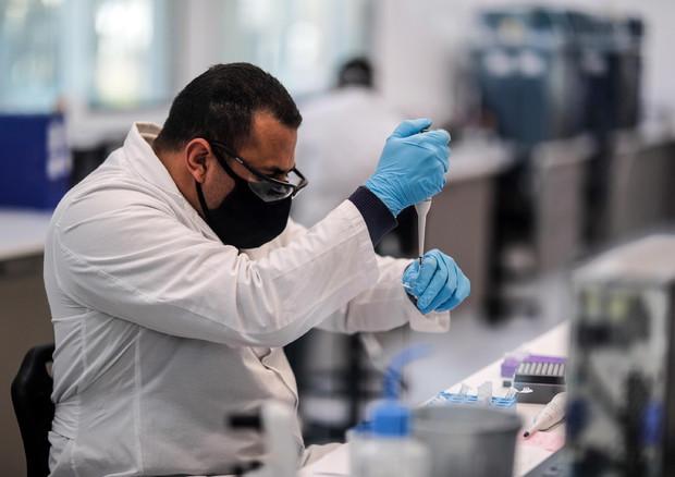 Covid: Ft, vaccino Oxford stimola risposta in anziani - Salute & Benessere
