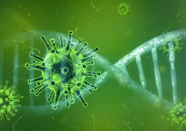 Rappresentazione artistica del nuovo coronavirus Sars-CoV-2 (fonte: Pixabay) © Ansa
