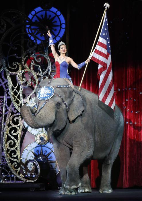 elefanti del circo Barnum