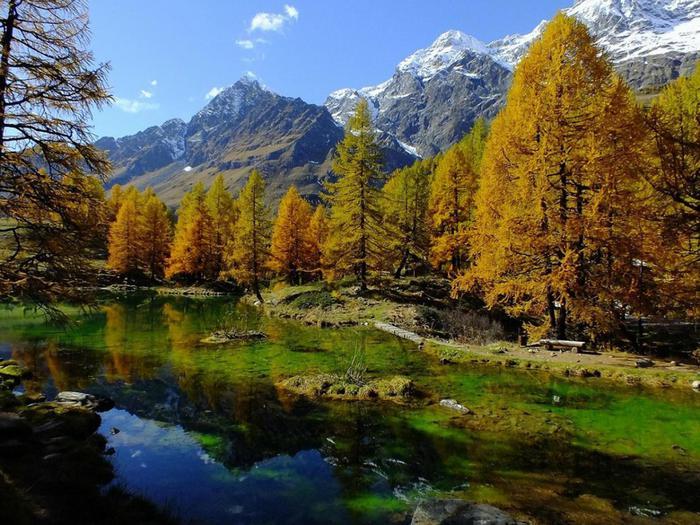 Картинки по запросу val d'aosta foliage