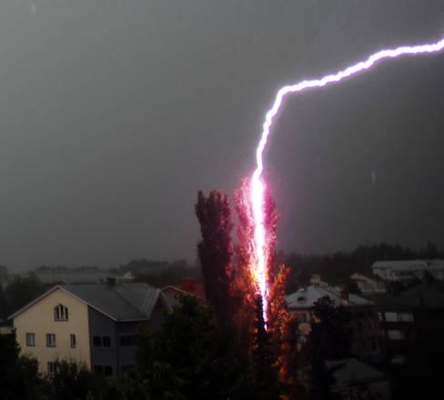 Un fulmine che colpisce un albero che poi prende fuoco, diffusa da Flick e' in testa alla classifica delle foto piu' cliccate