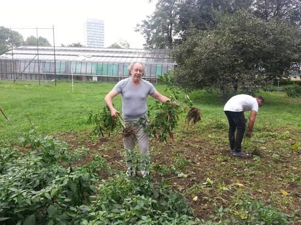 Lele Mora al lavoro nella comunita' di don Mazzi