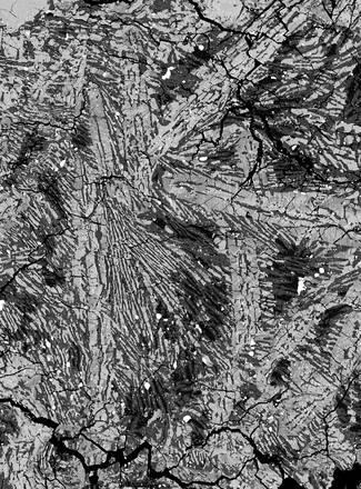 Struttura cristallina del meteorite ALHA81001 vista con il microscopio elettronico. Le aree scure conservano la ''memoria'' del campo magnetico di Vesta (fonte: Laboratorio di paleomagnetismo e laboratorio di Petrologia sperimentale, MIT)