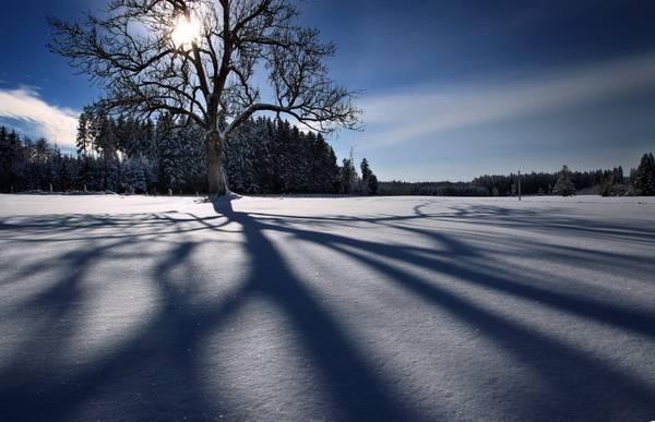 Il sole splende sulla neve di Aitrang, Bavaria