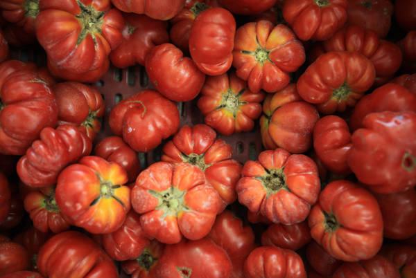 Da bucce pomodoro e scarti molecole per farmaci e cosmetica