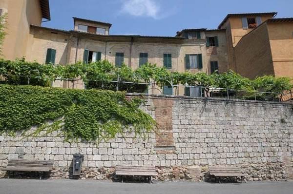 Siena riscopre gli antichi vitigni dentro le mura for Dentro le mura