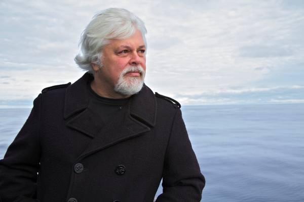 Il capitano Paul Watson fondatore della  Sea Sheperd Conservation Society