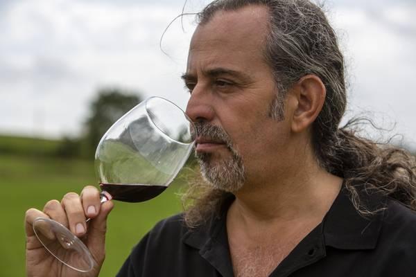 Andrea Bocelli, grande cantante e grande produttore di vini - Vino - Terra&Gusto - ANSA.it - 1359123770790_BY7A9625