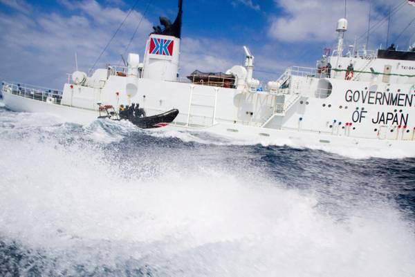Balene: speronamenti e accuse tra baleniere e Sea Shepherd