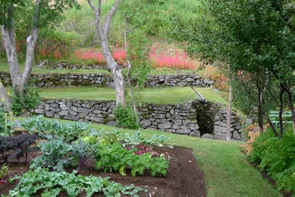 Grognards all 39 orto botanico di skrudur il premio scarpa - Quando seminare erba giardino ...