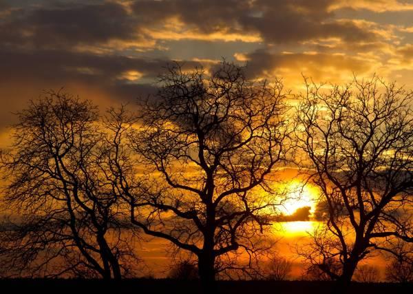Il tramonto tra i campi di  Sieversdorf, in Germania