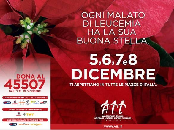 Prezzo Stella Di Natale Ail.Le Stelle Di Natale Ail Tornano In 4mila Piazze Italiane Sanita