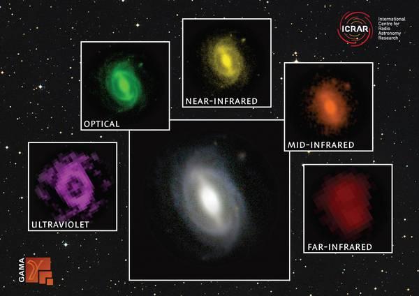 Le galassie osservate in diverse lunghezze d'onda, che dimostrano come l'universo si stia 'spegnendo' lentamente (fonte:  ICRAR / GAMA)