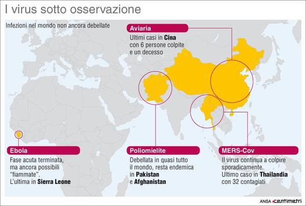 Virus Zika Arriva In Europa 4 Casi In Italia E 3 In Gb Medicina Salute E Benessere Ansa It