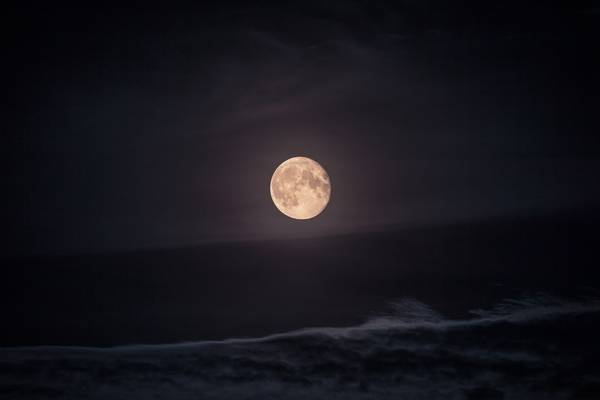 Foto Di Luna E Stelle.Luna Stelle Cadenti E Una Sfilata Di Pianeti Nel Cielo Di