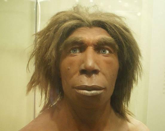 Neanderthal, il suo cromosoma Y sparito nell'uomo moderno