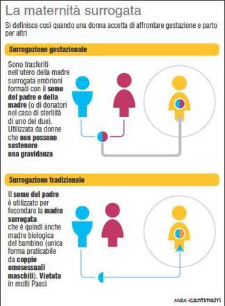 Consiglio Europa Boccia Maternita Surrogata Sanita Salute E Benessere Ansa It