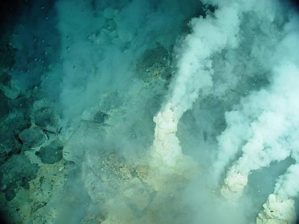 Luca viveva in un ambiente estremo, simile a una sorgente idrotermale (fonte: NOAA Office of Ocean Exploration, Bob Embley - NOAA PMEL)