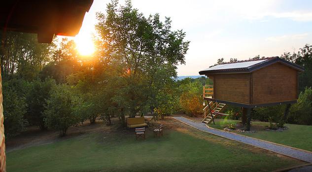 Tree house costruire resort sugli alberi lifestyle - Costruire case sugli alberi ...