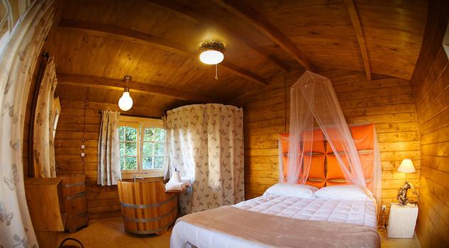 Tree house costruire resort sugli alberi case da sogno lusso lifestyle - Costruire casa albero ...