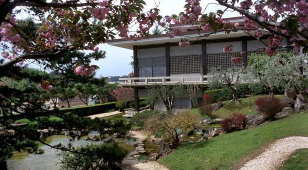 Ciliegi in fiore lo spettacolo del giardino giapponese for Architettura tradizionale giapponese