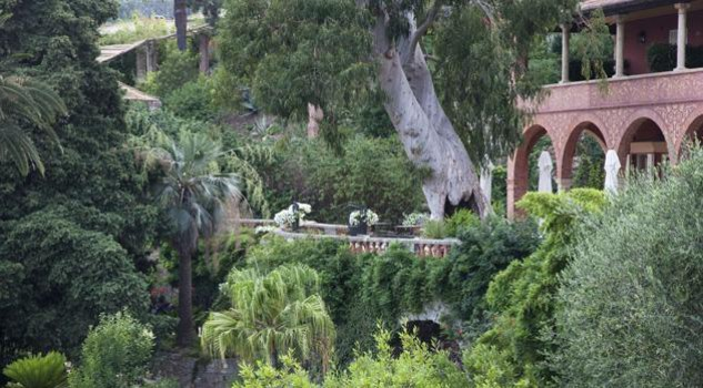 Glicini e agapanti meraviglie dei giardini di villa della for Giardini villa della pergola