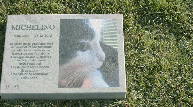 una degna sepoltura si moltiplicano in italia i cimiteri di cani e gatti animali passioni. Black Bedroom Furniture Sets. Home Design Ideas