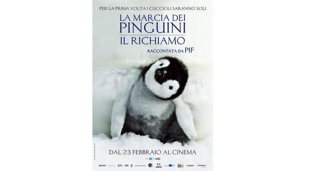Favori La Marcia dei Pinguini, ecco il sequel del documentario cult  WD85