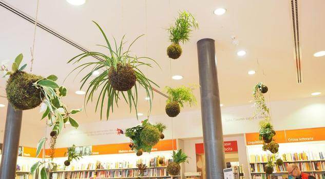 Giardini e giardinaggio il verde in libreria senza - Il giardino dei fiori segreti ...