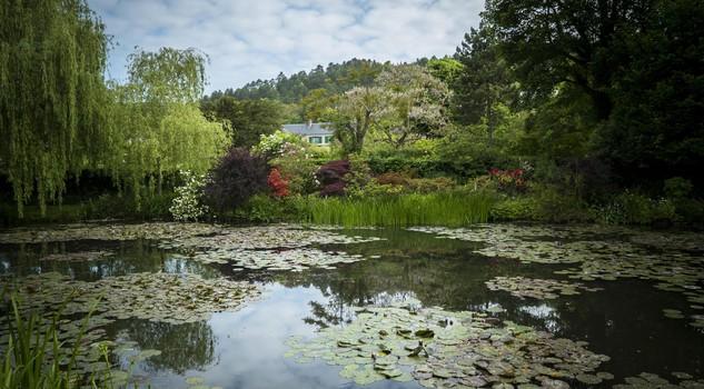 Ninfee e stagni come i giardini affascinarono gli impressionisti clip giardino passioni - Il giardino degli artisti ...