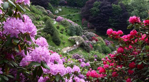 A pasquetta caccia al tesoro botanico nei grandi giardini for Laghetti nei giardini