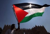 Bandiera palestinese (ANSA)