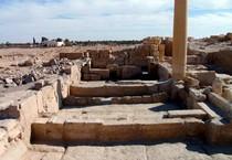 Palmyra (ANSA)