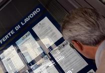 Un uomo controlla gli annunci di lavoro esposti in una agenzia per l'occupazione (ANSA)
