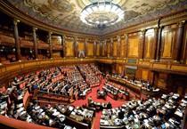 Una panoramica dell'aula del Senato (archivio) (ANSA)