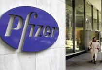 Pfizer (ANSA)