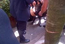 Parapiglia sotto palco Berlusconi, bloccato un uomo (ANSA)