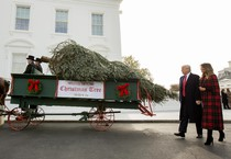 official White House Christmas Tree presentation with US President Donald J. Trump and First Lady Melania Trump (ANSA)