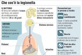 Legionella, ecco come si trasmette (ANSA)