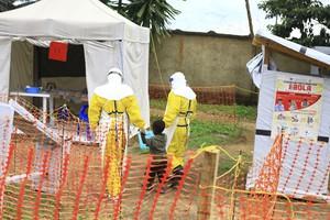 Ebola: Oms, epidemia si allarga ma basso rischio per l'Ue (ANSA)