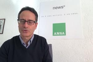 Oltre il virus, del direttore Luigi Contu (ANSA)