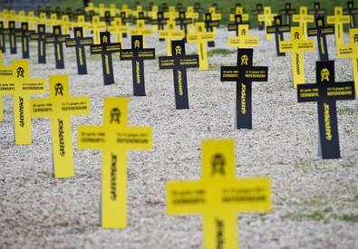 Croci piantate da Greenpeace sul terreno del Circo Massimo, Roma, 26 aprile 2011, per ricordare le vittime del disastro di Cernobyl (ANSA)