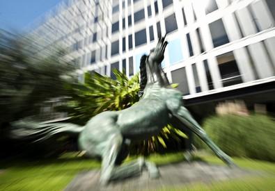 Il cavallo di fronte alla sede della Rai (ANSA)
