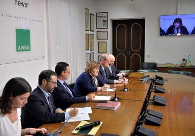 Rossella Orlandi, direttrice dell'Agenzia delle Entrate, nella sede dell'ANSA per un Forum (ANSA)