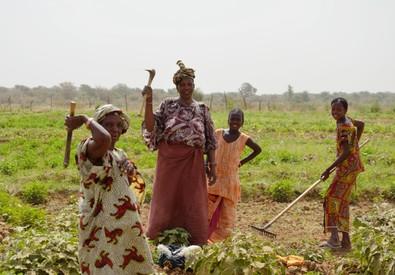 Fao, 72 Paesi in via sviluppo su 129 riusciti dimezzare fame (ANSA)