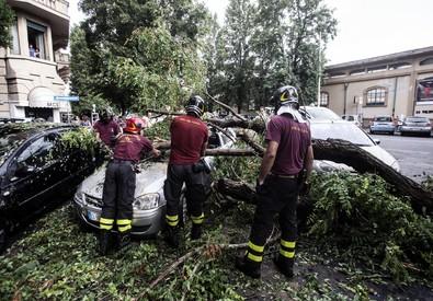 Maltempo a Roma, alberi caduti e allagamenti (ANSA)