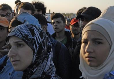 I migranti che attraversano il confine dalla Serbia, nel sud dell'Ungheria (ANSA)
