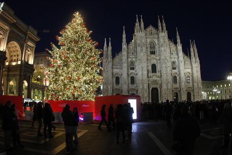 Albero Di Natale Milano.Panchine Da Albero Di Natale A Milano Lombardia Ansa It