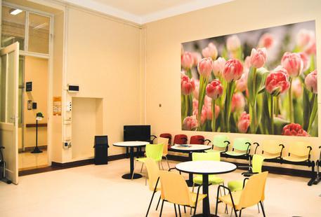 Blatte nelle cucine ospedale Molinette